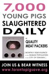 7000 Baby Pigs Killed Daily at Quality Meat Packers in Toronto