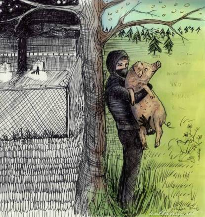 Katharina Rot - Pig Rescuer